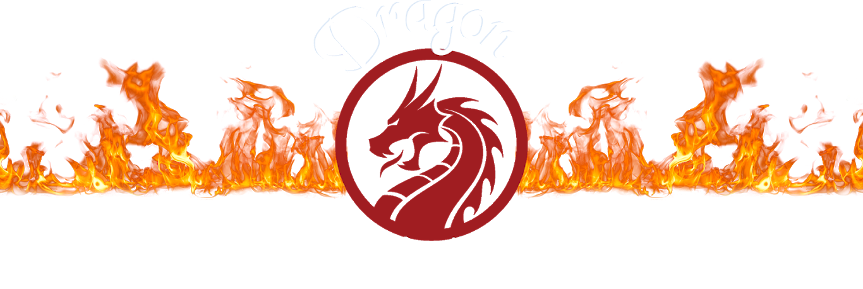 Dragon Tech   –  A Rocket Mass Heater Store